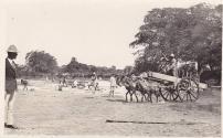 Rio Camu, La Vega , Republica Dominicana 1924 Fuente : La Vega History