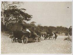 Vehiculo de motor Tirado por Bueyes, para cruzar el rio. Republica Domincana Imagen de Principios del Siglo 20 Fuente : AGN